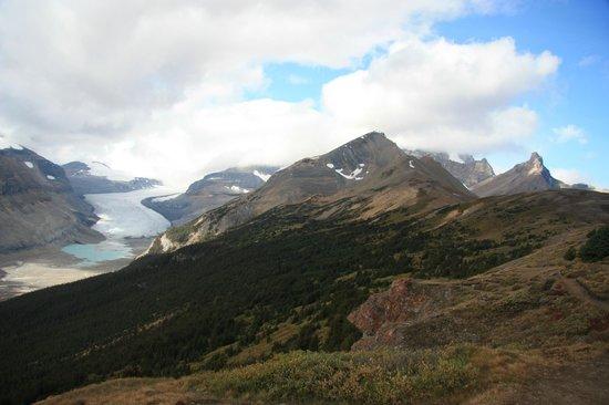 Parker Ridge Trail : Parker Ridge