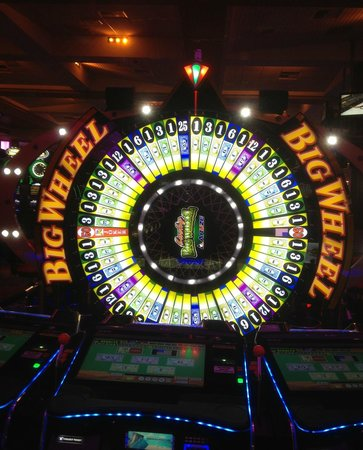 Hard rock hotel casino tampa florida