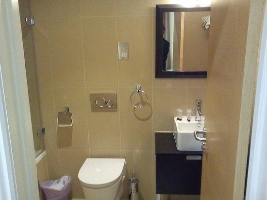 Cromwell International Hotel : bath