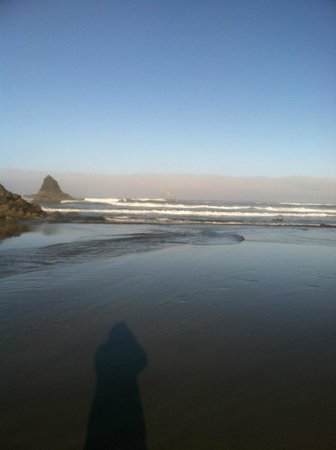 The Inn at Arch Cape : Beach in the morning