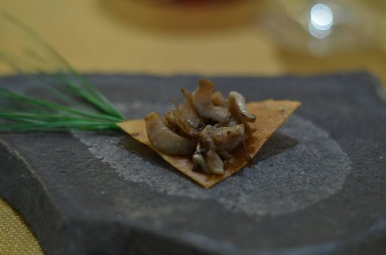 DAMON BAEHREL: Freshly foraged mushrooms? Yes please!