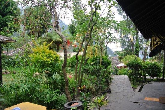 Yoschi's Hotel in Mountain Bromo : Uitzicht vanuit de kamer