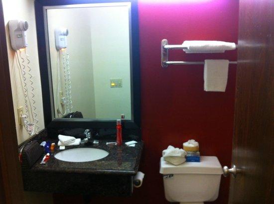 Red Roof Inn & Suites Monterey : Bathroom