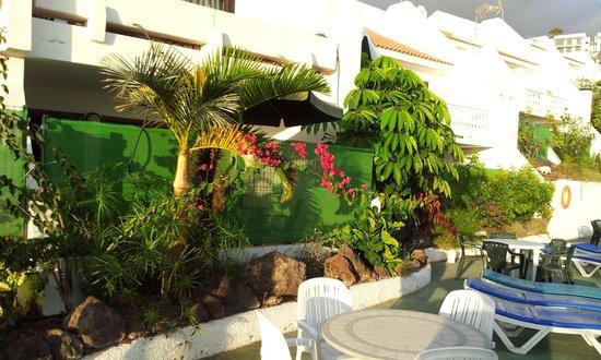 Costa Adeje Garden: my room