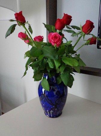 Kenzi Europa: merci pour ces belles roses