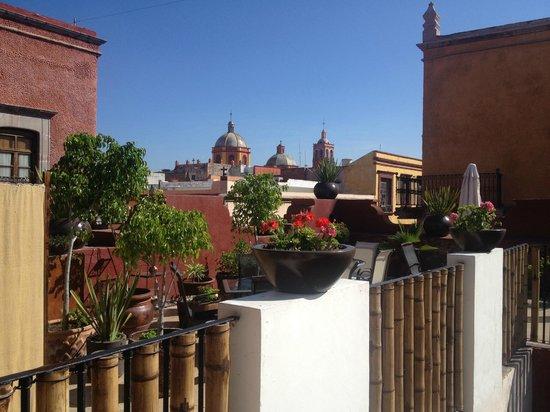La Casa del Naranjo Hotel Boutique : La hermosa vista desde mi habitación