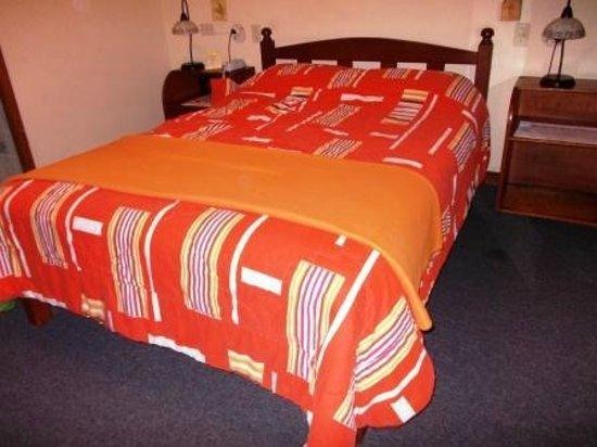 Hotel Las Palmas: Room