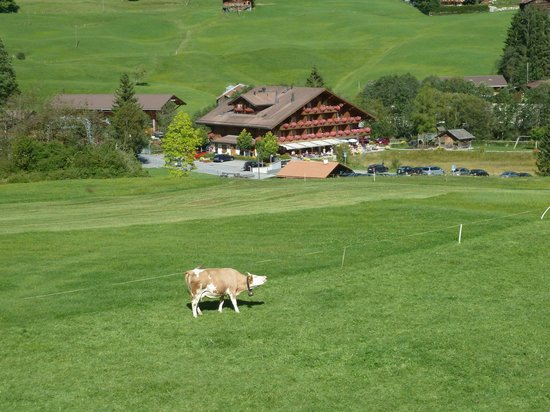 Hotel Alpenland Lauenen: Das Hotel inmitten schönster Natur