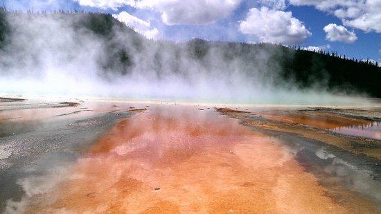 Jackson Hole Wildlife Safaris - Day Tours: Steaming geyser basin pool