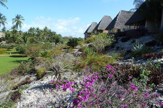 Neptune Pwani Beach Resort & Spa : De la verdure et des fleurs