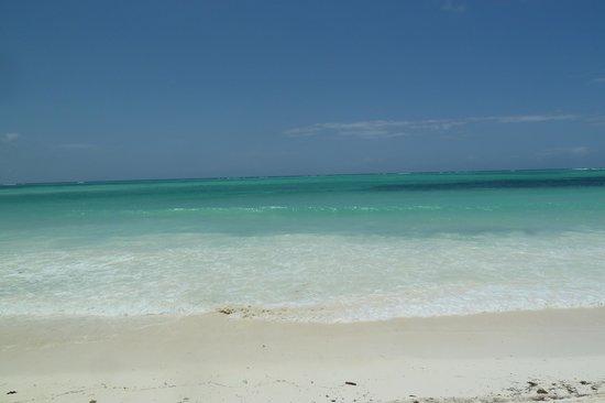 Neptune Pwani Beach Resort & Spa : Eau turquoise et barrière de coreil à plus d'un km