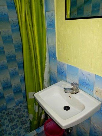 Green World Hotel: Ванная