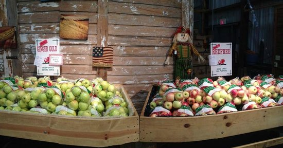 Waterbury Inn: Roadside Farm market