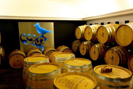 La Coquillade : Wine Tasting