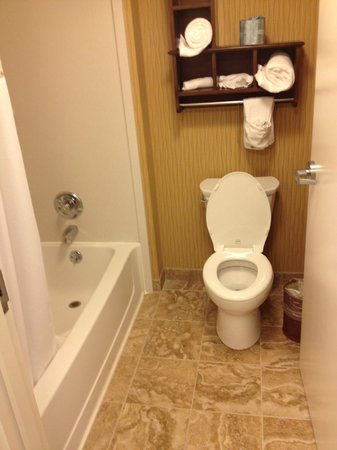 Hampton Inn & Suites Rochester / Henrietta: Bathroom - King Suite with Sofa Bed