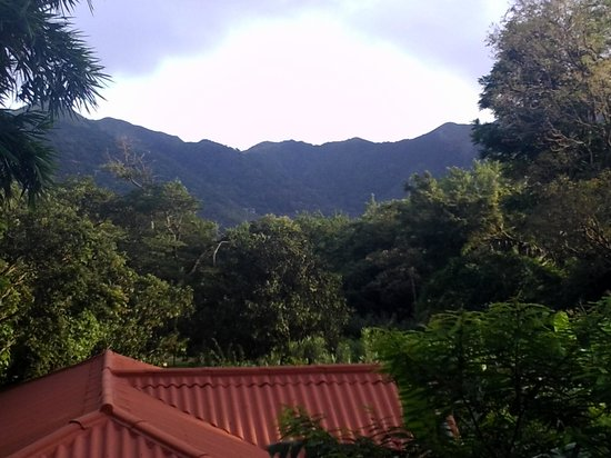 Casa Mariposa : Mountains surround. view from the terrace