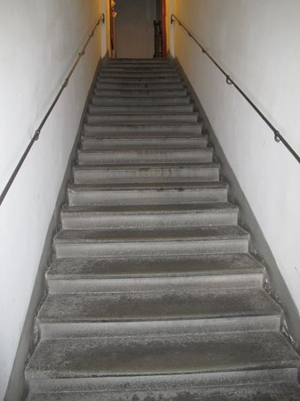 Relais Cavalcanti: Can you climb these stairs to get to the elevator?