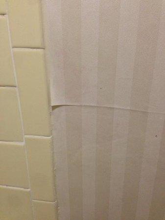 Millennium Maxwell House Nashville: peeling wallpaper