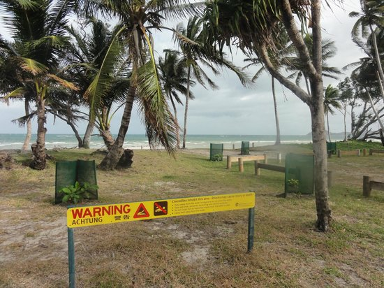 Queensland, Avustralya: Chili beach, very windy.  Watch out for crocs