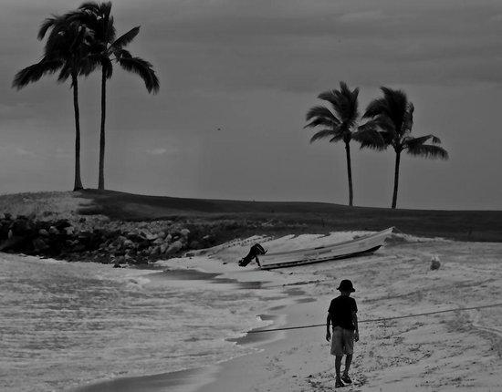 The St. Regis Punta Mita Resort : Playing in Marietas