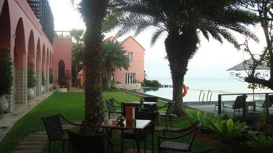 Villa Maroc: The main pool & some of the beautiful gardens