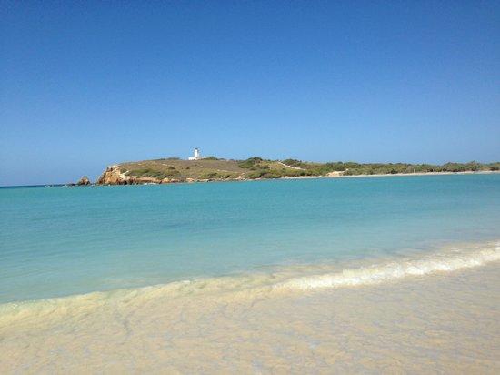 Combate Beach Resort: beach near the hotel