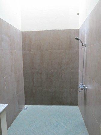 Hibiscus Villa: The shower in the garden facing room