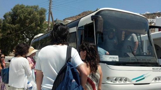 Mama's Pension : Buses que los llevaran al Town (Pueblo)