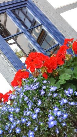 Artischocke: Blumenarangement