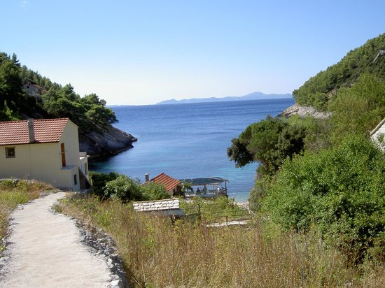 Grgic Apartments: Just one of the coves