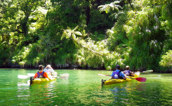 Marlborough Sounds Adventure Company - Day Tours : Sea kayaking Queen Charlotte Sound