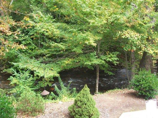 Four Seasons Inn: View of the creek