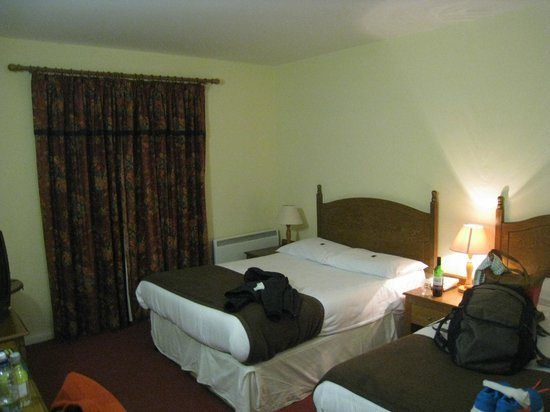 Shannon Springs Hotel : Pic of our room