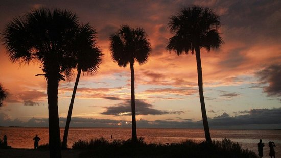 Tarpon Springs, FL: Beautiful sunset