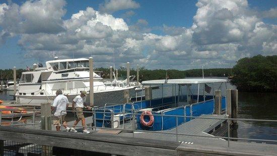 Caladesi Island Ferry Service