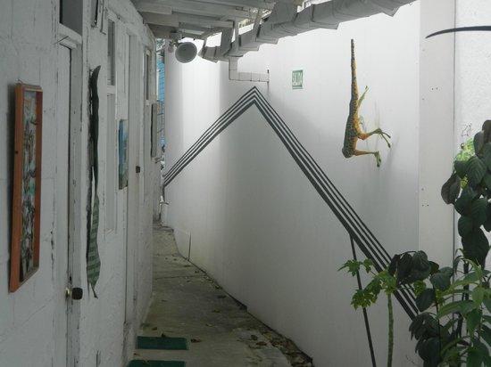 Posada Lizard House: pozada lizard house