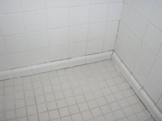 White Sands Hotel: shower stall with mildew