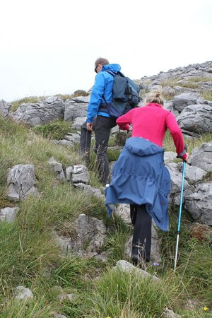 Burren Wild Tours: Hicking up the burren