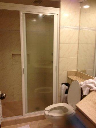 Hotel Catedral: Baño