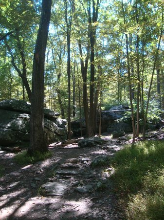 Cunningham Falls State Park: Part of the trail