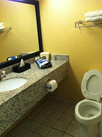 Best Western River City Hotel: bathroom