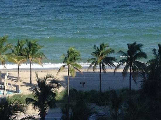 Sonesta Fort Lauderdale Beach: corner room