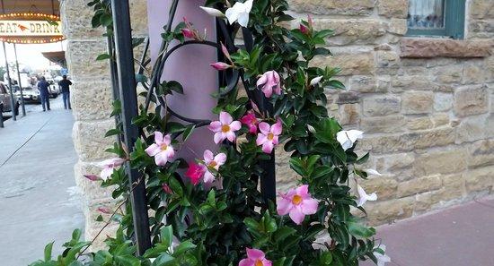 Hotel Eklund: A little peek of flowers in the courtyard