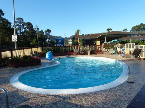 Monterey Surf Inn: Swimming pool