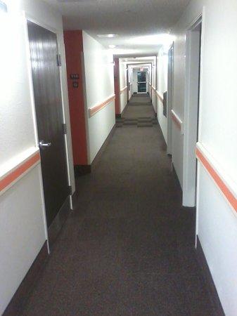 Motel 6 Killeen: they renovated the hallways, looks upscale
