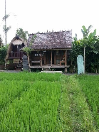 Sharing Bali: Our little hut