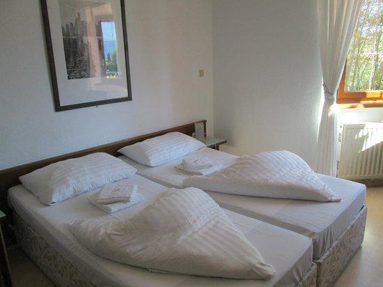 Hotel Heimgartl: Our room