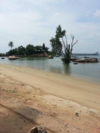 ตูริ บีช รีสอร์ท: Beach area at high tide