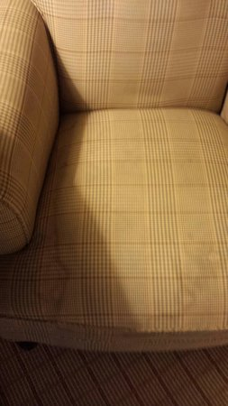 Sheraton Tampa Riverwalk Hotel: Stained couch cushion