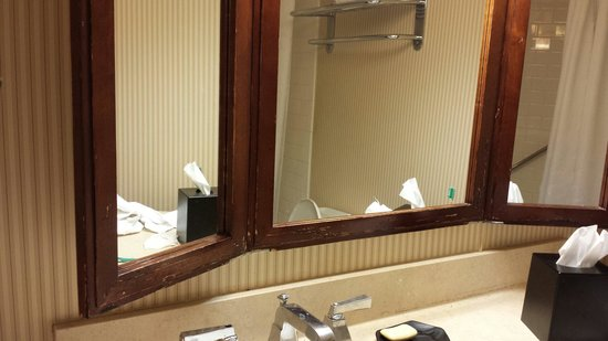 Sheraton Tampa Riverwalk Hotel: Chipped mirror